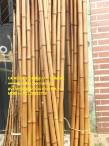BAMBU SOPLETEADO - MOB 3125395738
