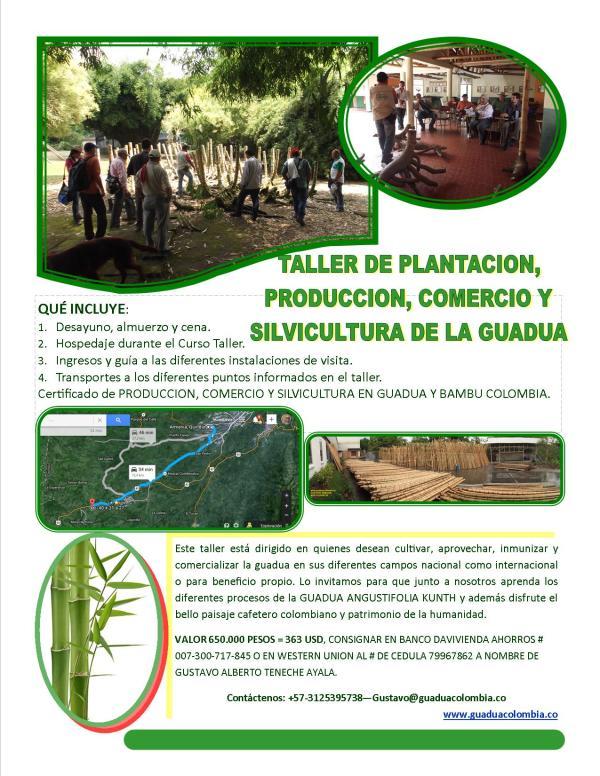 taller comercio produccion y silvicultura de la guadua 16 19 jul 2014